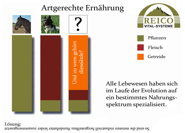 Reico-artegerechte-tiernahrung-diagram